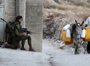 IDF_Donkey