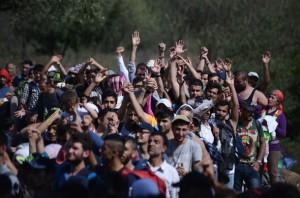 Migrants-fake-Syrian-passports-350686
