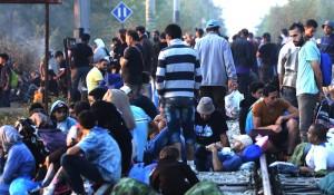 skopia_migrants