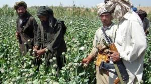 taliban_wide-8f6162a4db55cd06463bdaabdfc29e49fc0e28a0-s900-c85-300x168